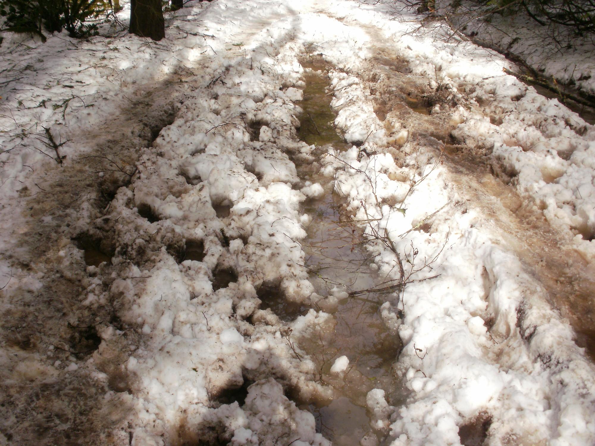 Du học ở xứ lạnh -20 độ C: Cả tháng không thể tắm - Ảnh 5.