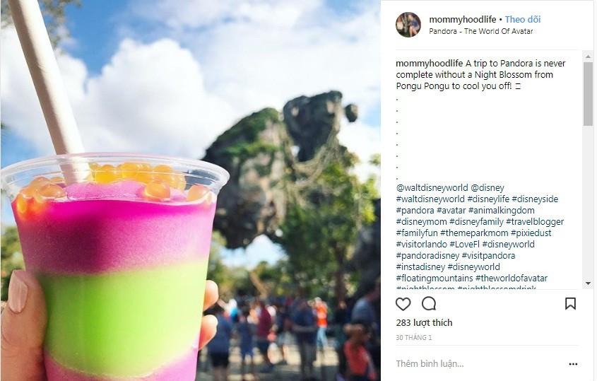Các món giới trẻ kháo nhau phải thử bằng được khi đến với công viên Disney World - Ảnh 1.