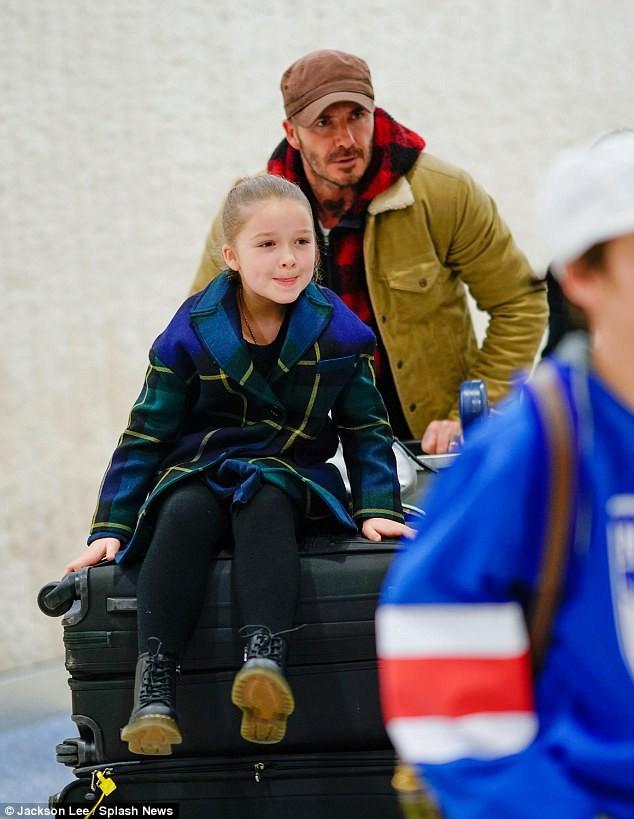 Bé Harper Beckham tươi cười lộ cả răng sún cực xinh khi xuất hiện bên bố tại sân bay - Ảnh 6.
