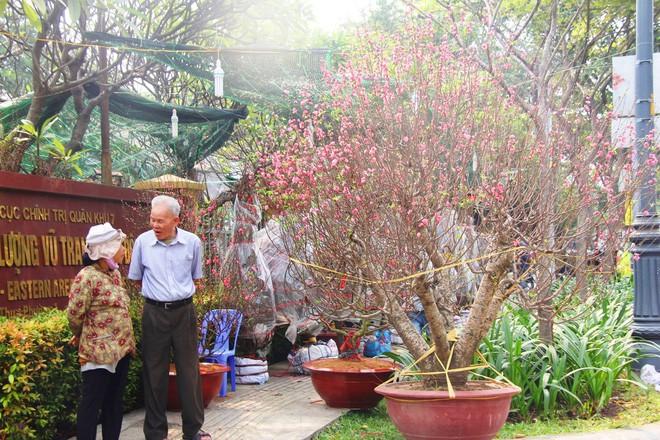 30 triệu đồng một gốc đào, người Sài Gòn vẫn hào hứng mua về chơi Tết - Ảnh 8.