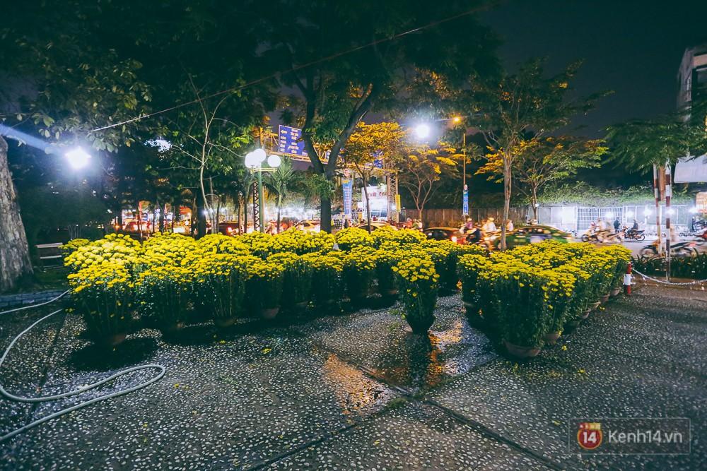Một điểm bán hoa Tết tại công viên Hoàng Văn Thụ vắng khách vào ban đêm.