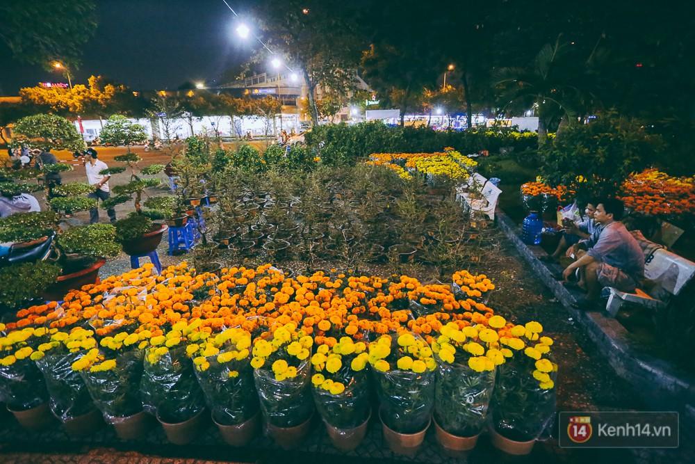 Hoa Tết với đủ loại kích cỡ, màu sắc được bày bán nhiều điểm ở Sài Gòn nhưng hiện khá ít người hỏi mua.