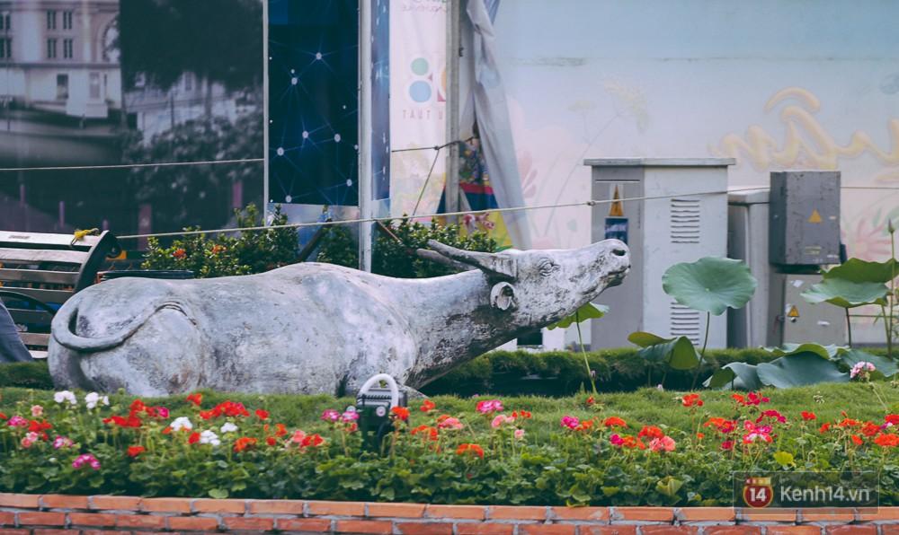 Con trâu - tượng trưng cho làng quê Việt Nam cũng xuất hiện ở đường hoa năm nay.