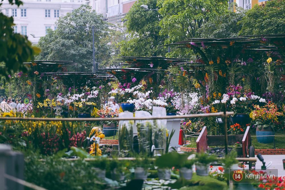 Chùm ảnh: Ngắm đường hoa Nguyễn Huệ đang được gấp rút hoàn thành trước ngày khai mạc - Ảnh 18.