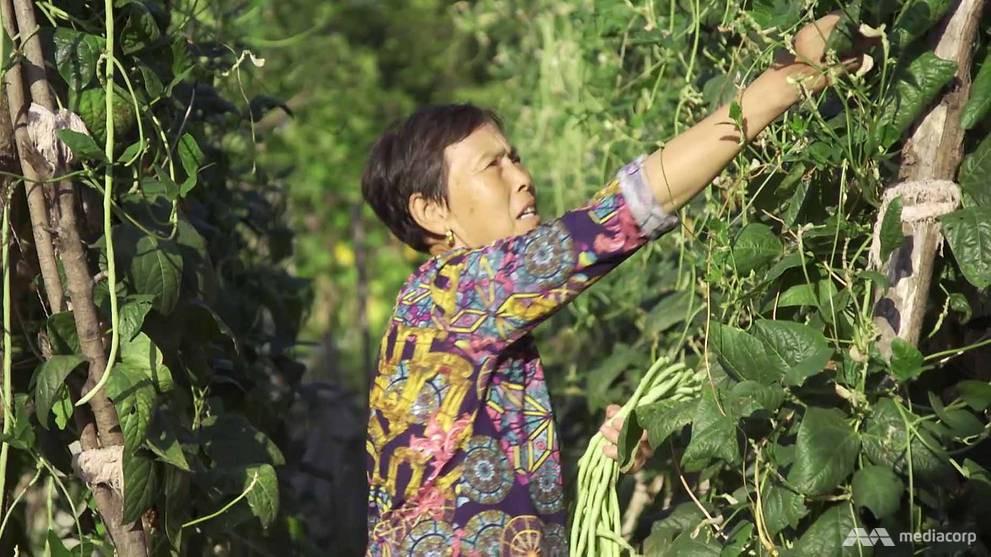 Cuộc trùng phùng trong nước mắt của 2 mẹ con sau 39 năm xa cách: nỗi buồn từ chính sách một con của Trung Quốc - Ảnh 2.