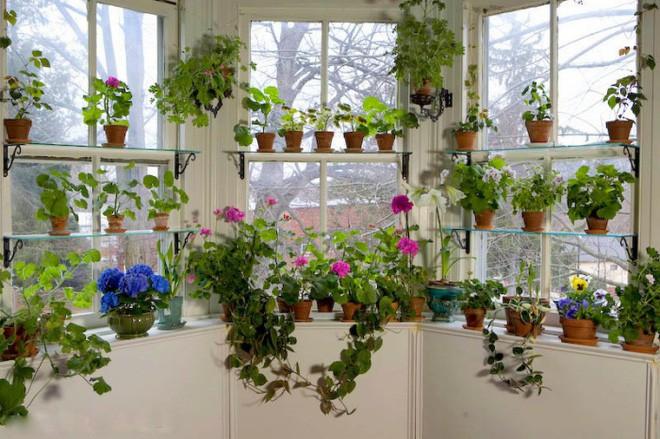 Trang trí cửa sổ đẹp lãng mạn đón năm mới tươi vui, hạnh phúc - Ảnh 15.