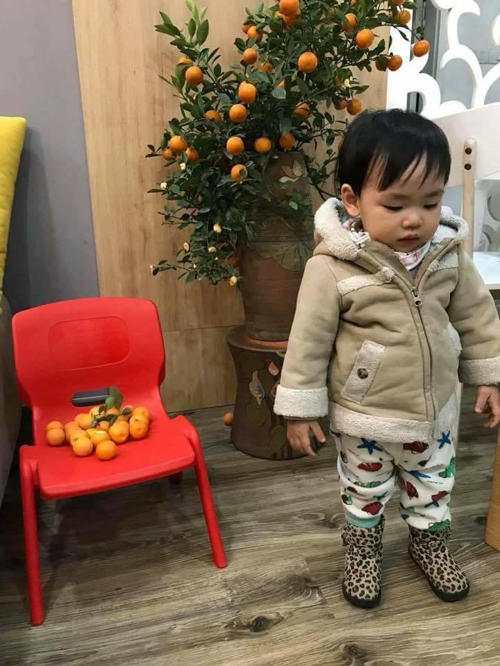 Nỗi lòng người bố mua cây quất đẹp chơi Tết, vừa kịp đăng Facebook khoe thì con gái vặt sạch quả - Ảnh 2.