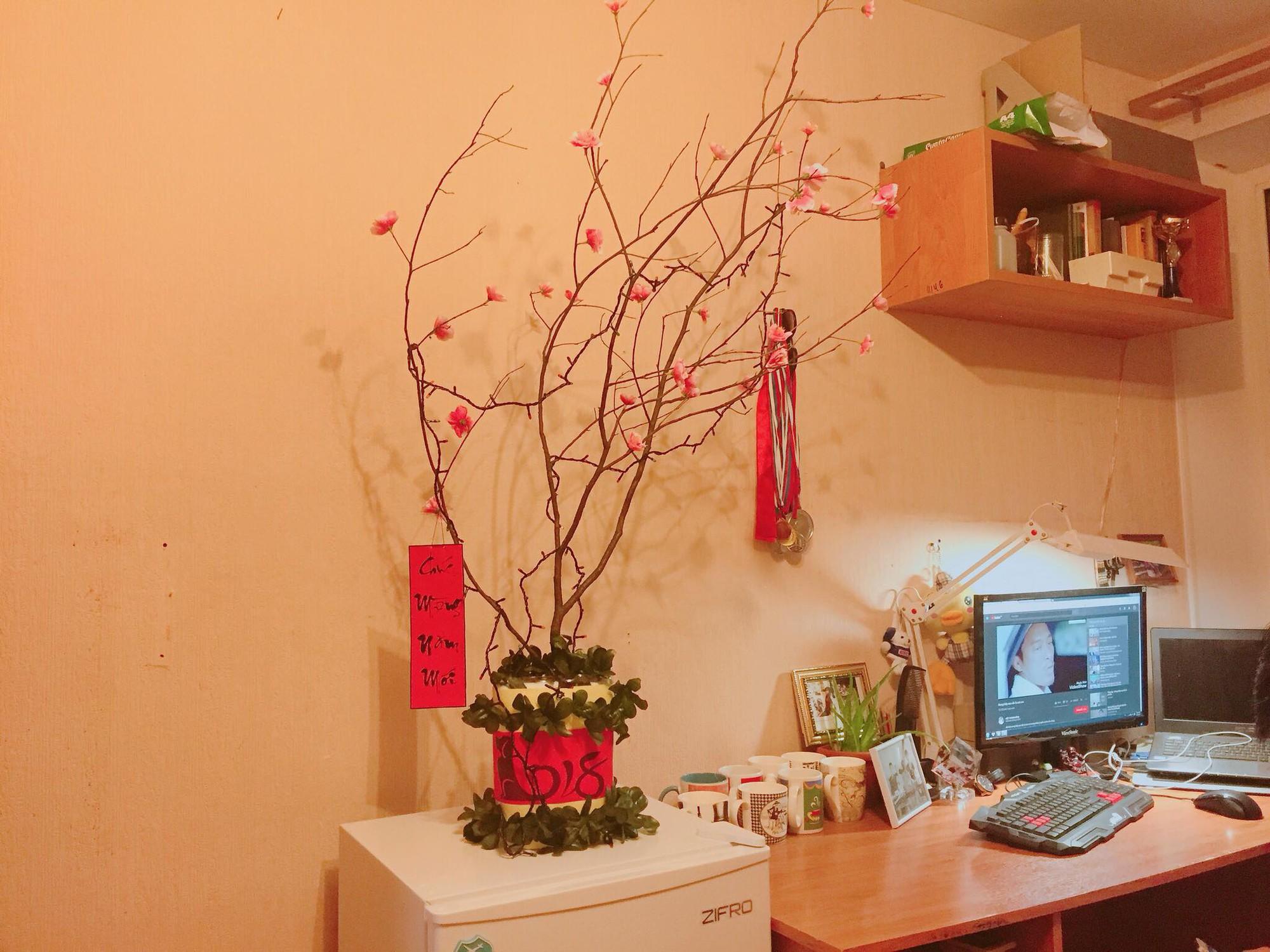 Du học sinh Việt dùng củi khô, gấp giấy ăn làm hoa đào, hoa mai đón Tết - Ảnh 10.