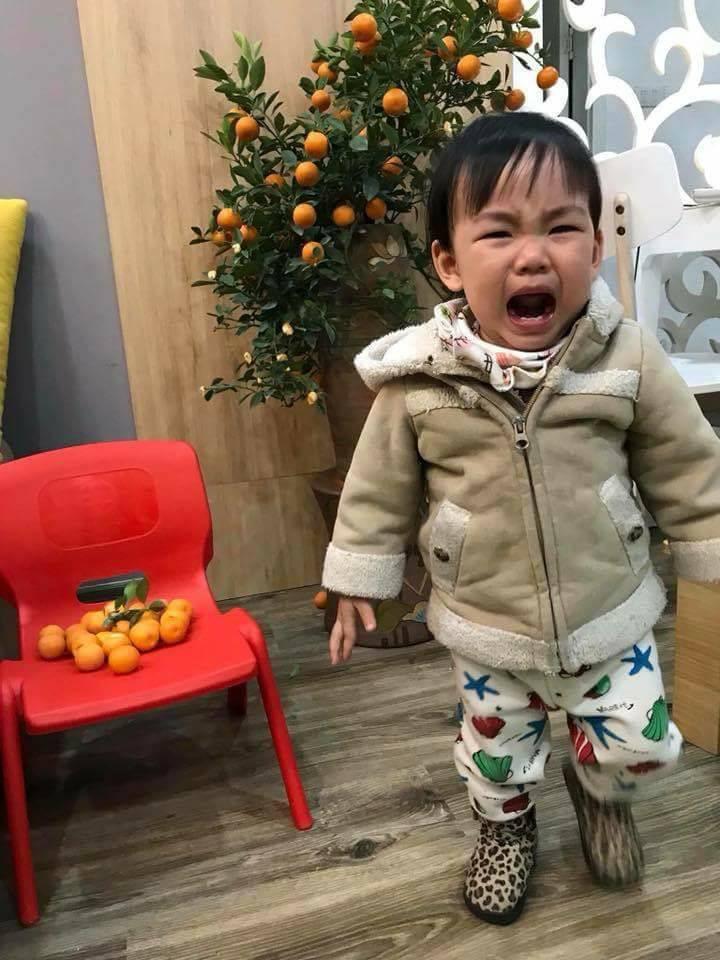 Nỗi lòng người bố mua cây quất đẹp chơi Tết, vừa kịp đăng Facebook khoe thì con gái vặt sạch quả - Ảnh 5.