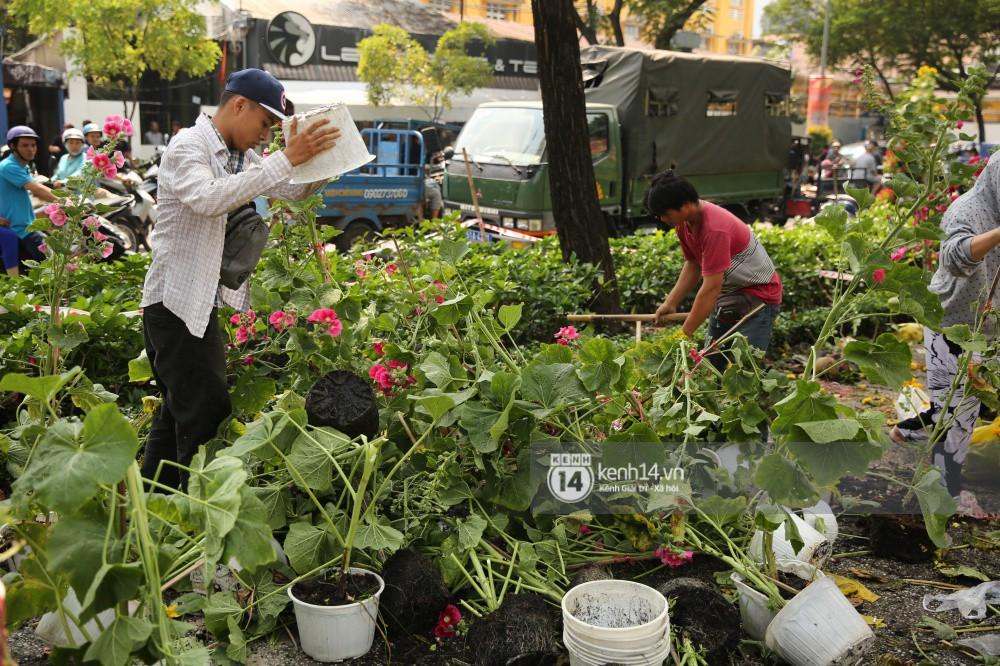 Các chậu hoa được chất đống lại dùng gậy đạp nát vì không muốn cho người dân