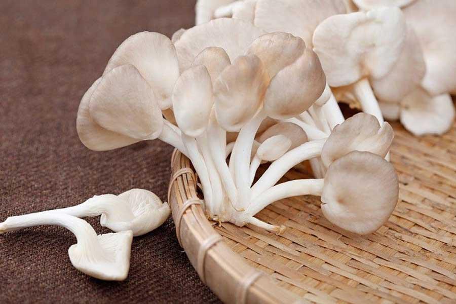 Rau củ quả màu trắng: loại thực phẩm chứa đầy lợi ích sức khoẻ mà không phải ai cũng biết - Ảnh 7.