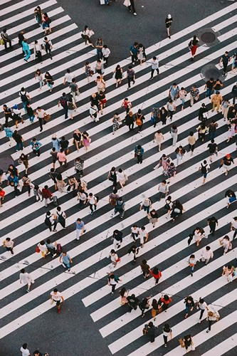 Khám phá nét đẹp vừa hiện đại vừa truyền thống của Tokyo - Ảnh 11.