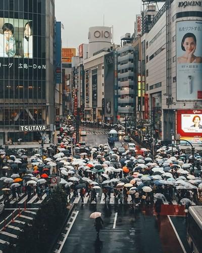 Khám phá nét đẹp vừa hiện đại vừa truyền thống của Tokyo - Ảnh 20.