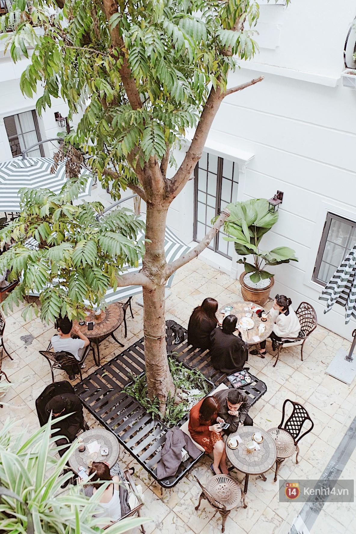 Review nhanh quán cafe rộng 2000m2 đang hot nhất Hà Nội dịp Tết này - Ảnh 11.