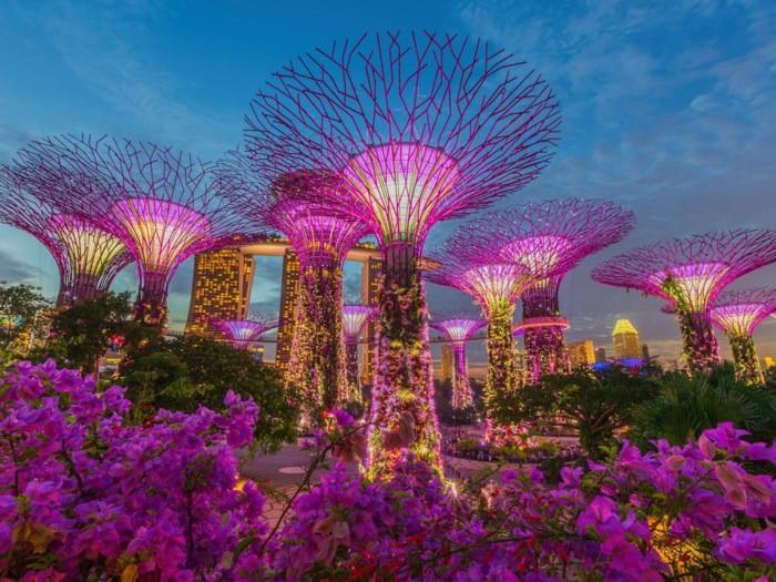 Bloomberg công bố danh sách 50 quốc gia có dân số khỏe mạnh nhất thế giới: 3 nước châu Á nằm ở top 10 - Ảnh 8.