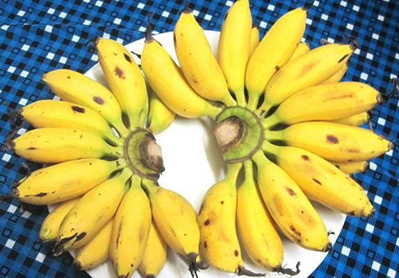 Bananacoin - Đồng tiền chuối, có trị giá bằng 1 cân chuối - Ảnh 4.