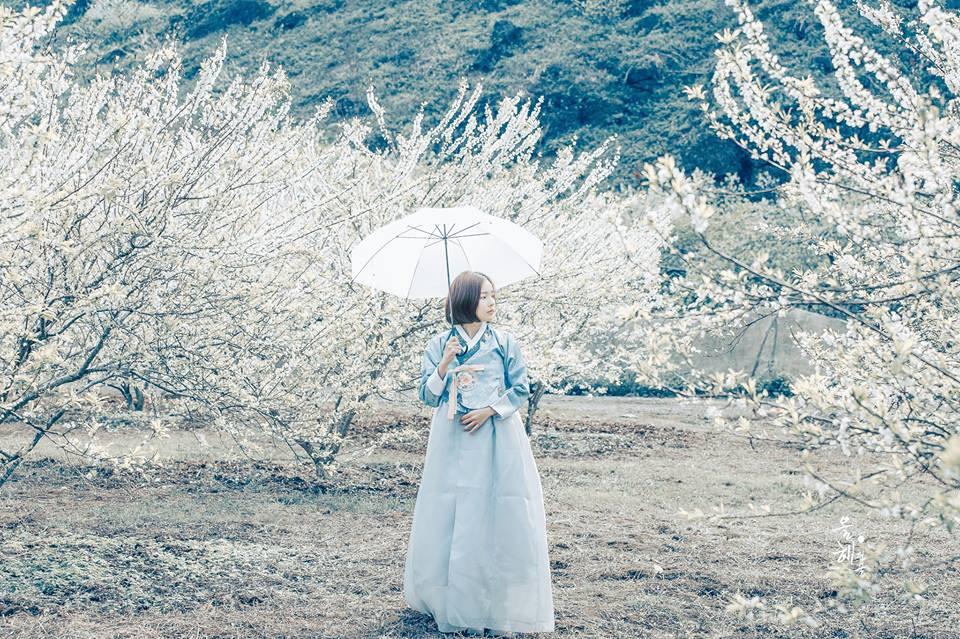 Mùa hoa mận năm ấy - Bộ ảnh khiến ai xem xong cũng nghĩ mãi về Mộc Châu - Ảnh 7.