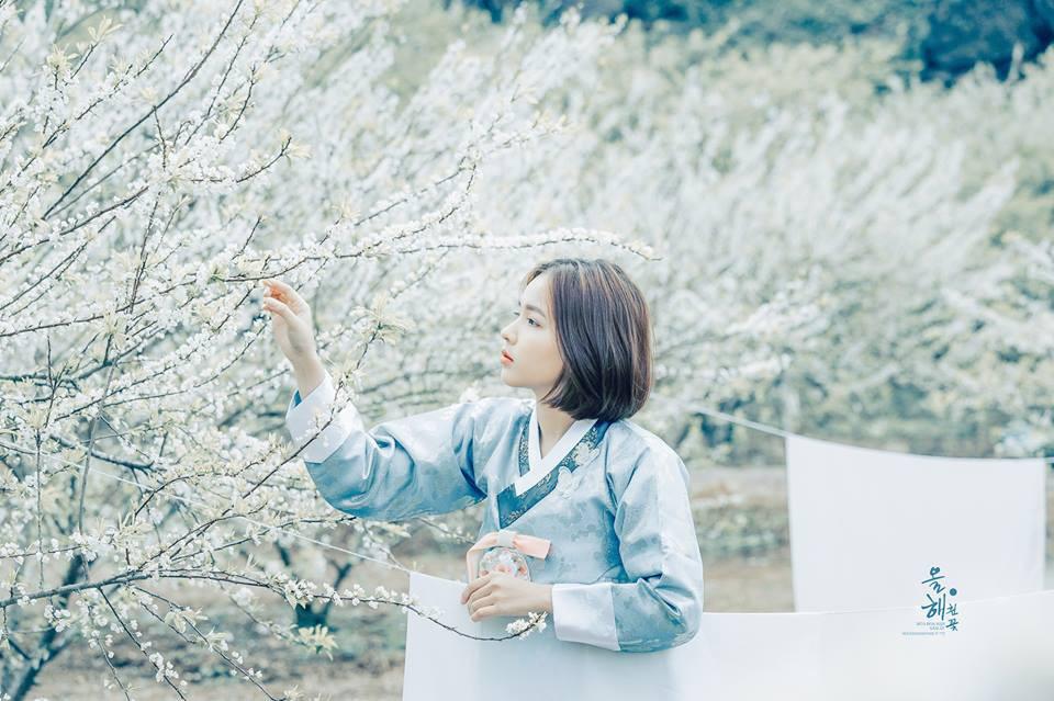 Mùa hoa mận năm ấy - Bộ ảnh khiến ai xem xong cũng nghĩ mãi về Mộc Châu - Ảnh 9.