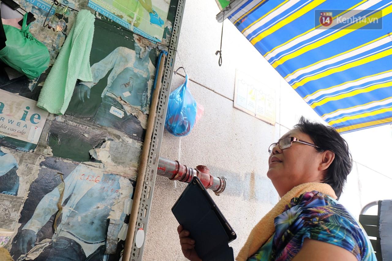 Chuyện cô giúp việc, dì bán vải chung sức cứu giúp hàng nghìn chú mèo suốt 17 năm ở Sài Gòn - Ảnh 6.