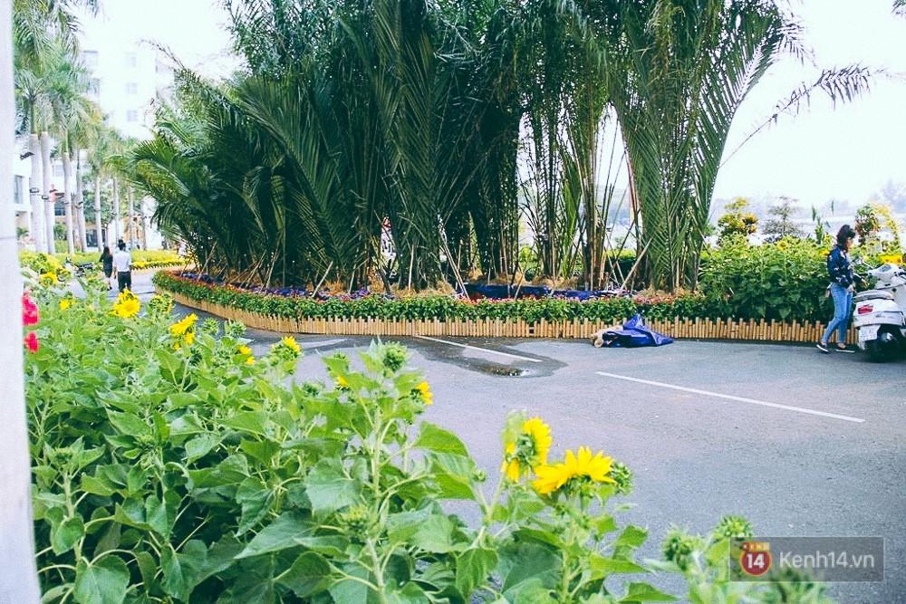 Nhiều thiếu nữ xúng xính váy áo, kéo đến đường hoa xuân ở phố nhà giàu Sài Gòn để check-in - Ảnh 8.