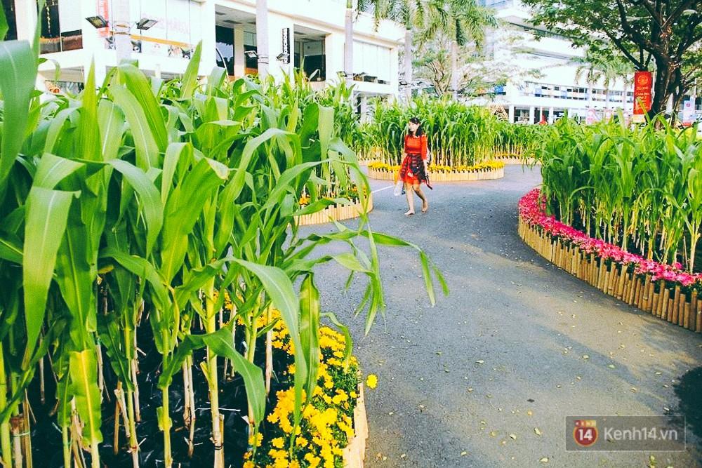 Nhiều thiếu nữ xúng xính váy áo, kéo đến đường hoa xuân ở phố nhà giàu Sài Gòn để check-in - Ảnh 6.