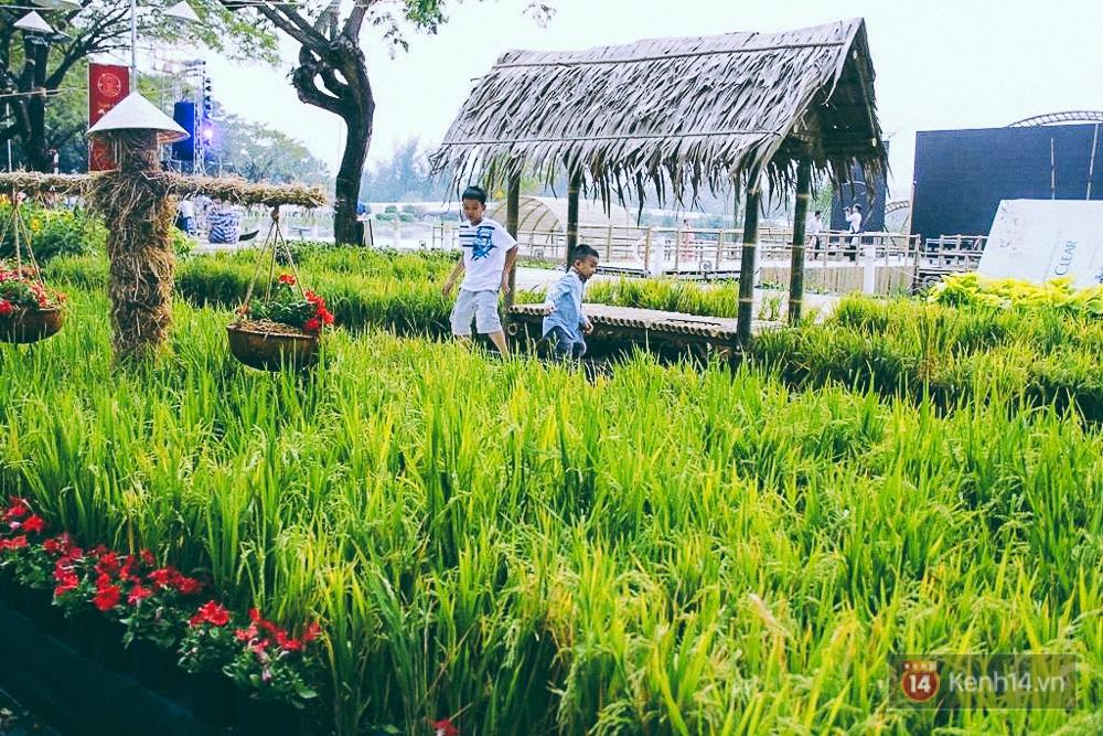 Nhiều thiếu nữ xúng xính váy áo, kéo đến đường hoa xuân ở phố nhà giàu Sài Gòn để check-in - Ảnh 10.