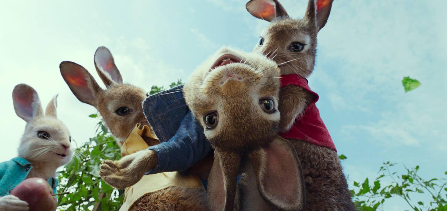 Chú Thỏ Peter tinh nghịch sẽ khuấy đảo màn ảnh rộng mùa Tết 2018 - Ảnh 3.