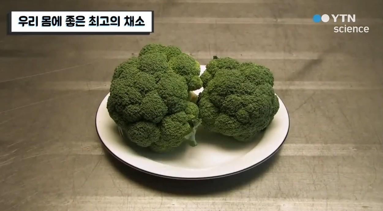 3 loại thực phẩm cực tốt cho sức khỏe mà đài YTN Hàn Quốc khuyên dùng thường xuyên - Ảnh 2.