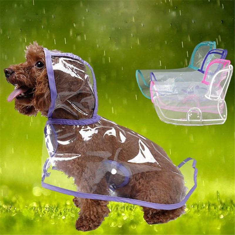 Trời mưa lạnh thế này, sắm ngay một chiếc áo mưa siêu cấp đáng yêu cho cún thôi nào - Ảnh 1.