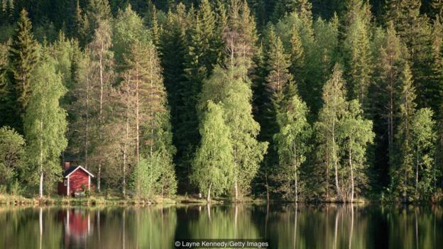 Suomi: Câu chuyện về tên một quốc gia mà hàng trăm năm qua, người ta vẫn không thể lý giải - Ảnh 3.