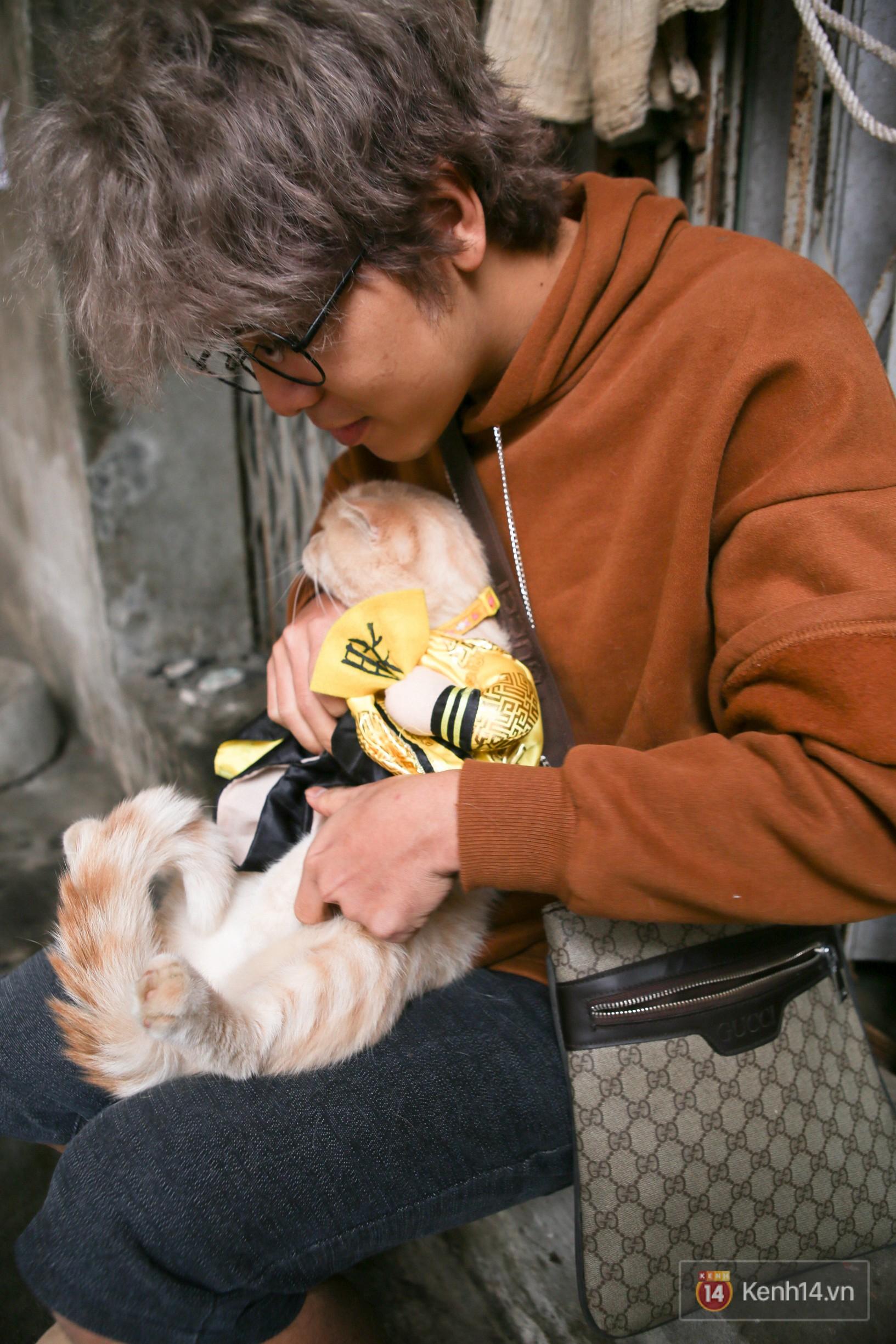 """Về Hải Phòng """"diện kiến"""" chú mèo tên Chó và cậu chủ siêu cute đang nổi danh khắp MXH tây ta - Ảnh 10."""