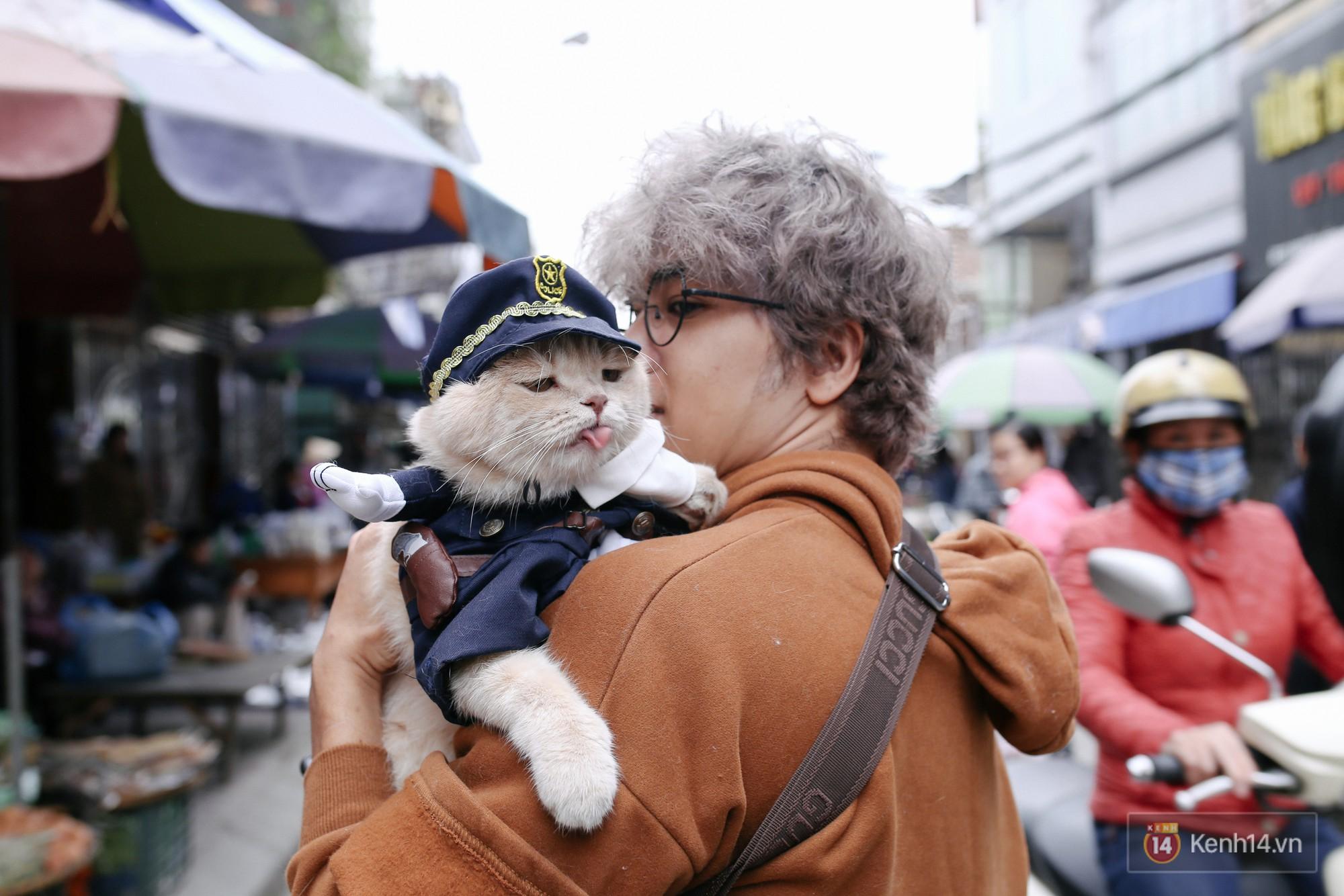 """Về Hải Phòng """"diện kiến"""" chú mèo tên Chó và cậu chủ siêu cute đang nổi danh khắp MXH tây ta - Ảnh 1."""