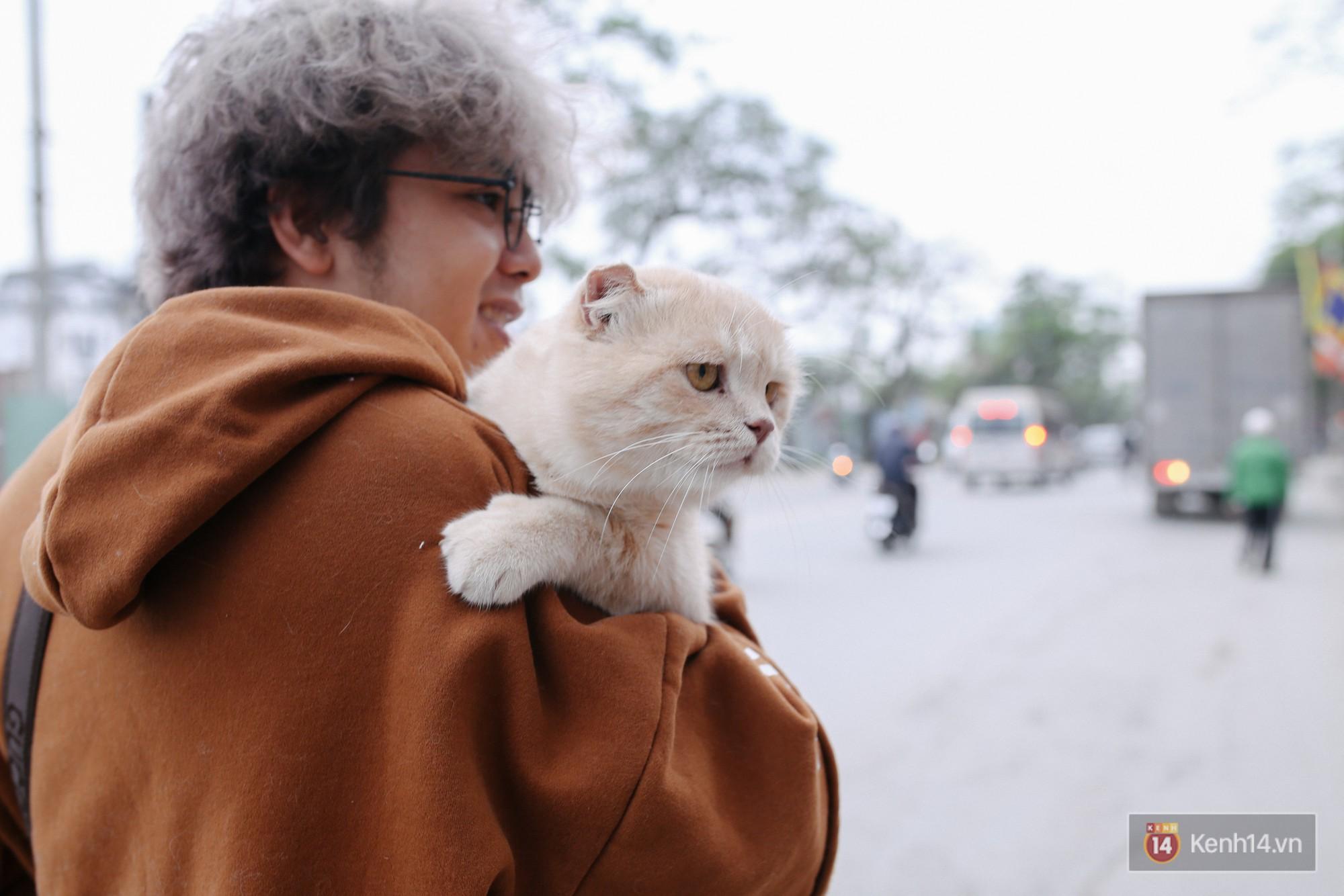 """Về Hải Phòng """"diện kiến"""" chú mèo tên Chó và cậu chủ siêu cute đang nổi danh khắp MXH tây ta - Ảnh 18."""