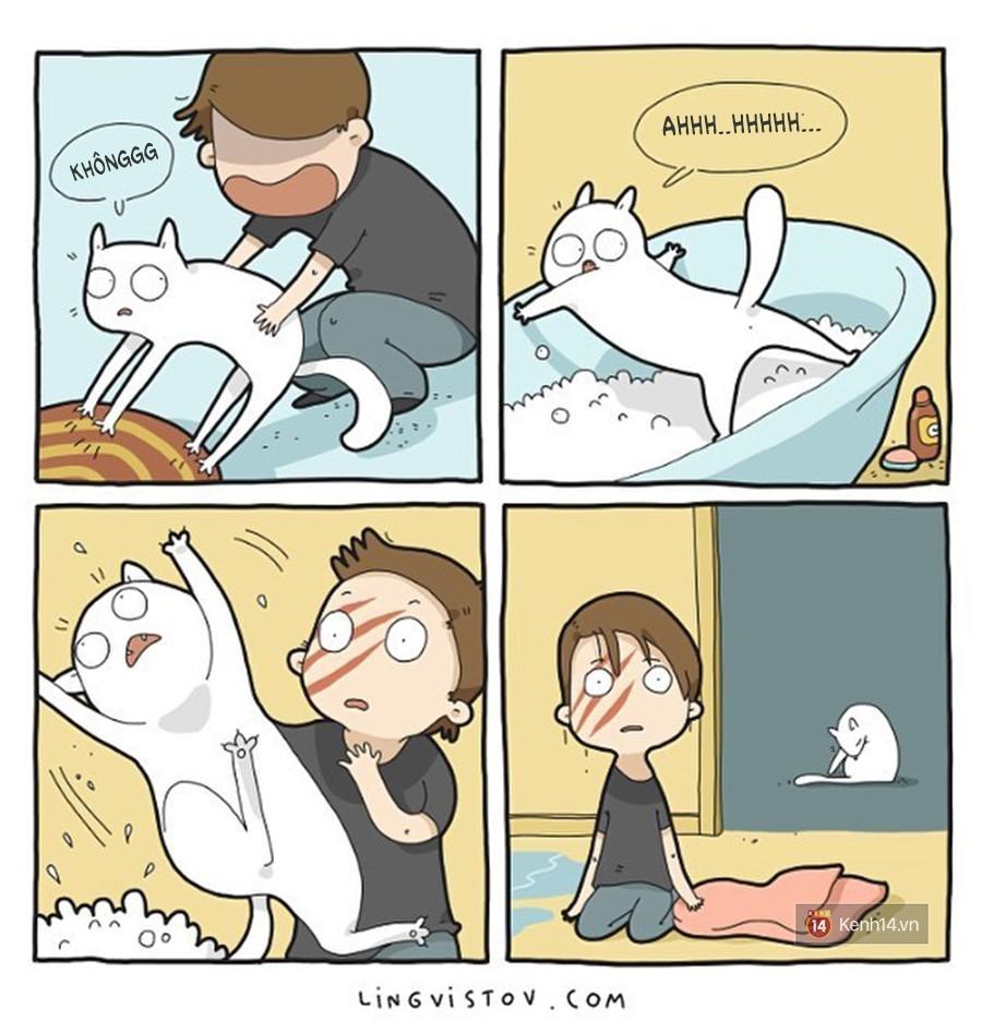 Có thể bạn thừa biết: Mèo giống như con gái vậy, đáng yêu nhưng khó ưa cực kì! - Ảnh 1.