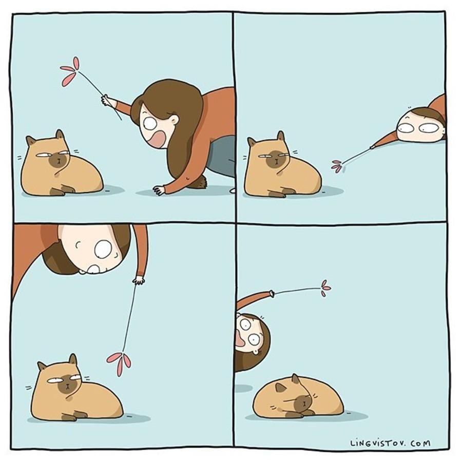 Có thể bạn thừa biết: Mèo giống như con gái vậy, đáng yêu nhưng khó ưa cực kì! - Ảnh 7.