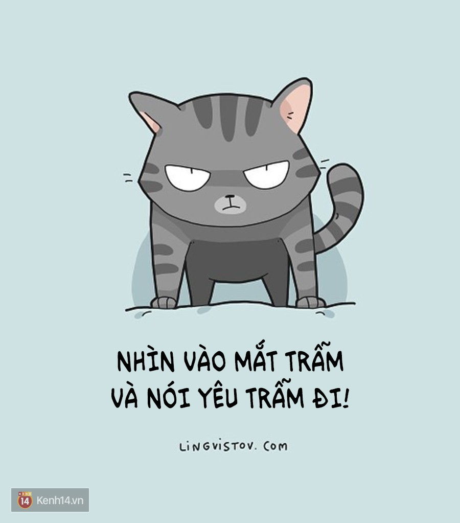 Có thể bạn thừa biết: Mèo giống như con gái vậy, đáng yêu nhưng khó ưa cực kì! - Ảnh 17.