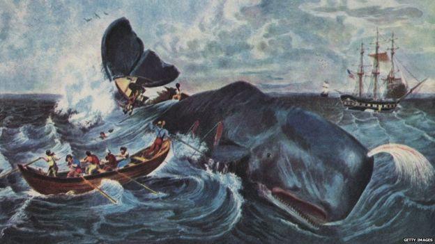 Quốc gia gây tranh cãi nhất 2018: ra quyết định tiếp tục giết và tiêu thụ hàng ngàn con cá voi - Ảnh 1.