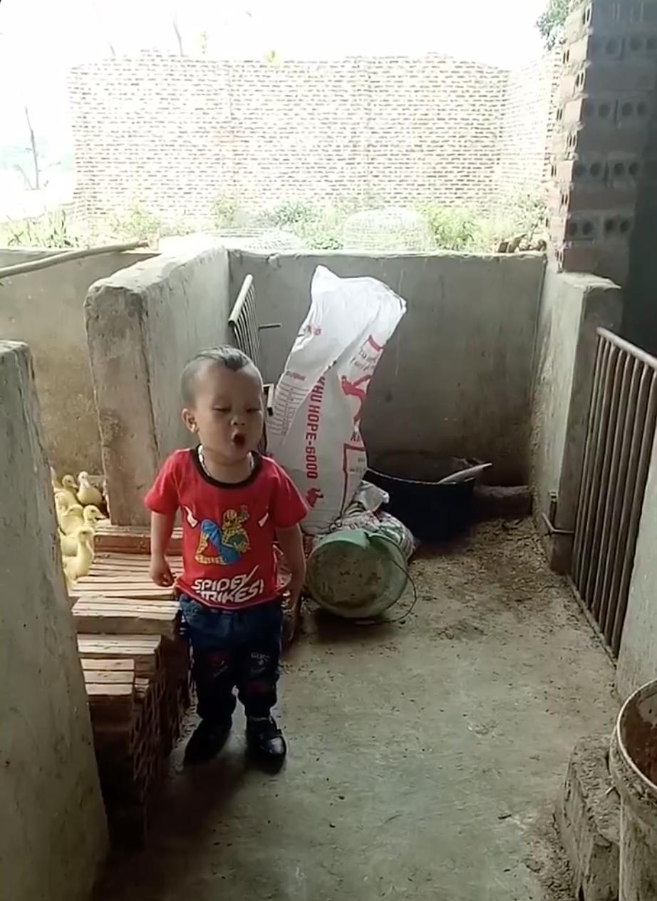 Clip: Bé 3 tuổi đứng dõng dạc cãi nhau với chó khiến dân mạng share vỡ cả news feed - Ảnh 2.