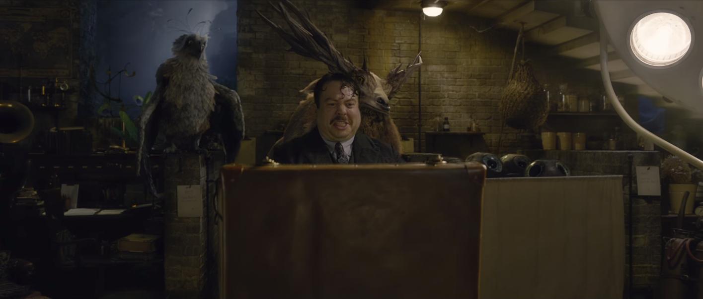 """Hiệu trưởng Dumbledore Jude Law cực bảnh thả thính tung tóe ngay trailer """"Fantastic Beasts 2"""" - Ảnh 11."""