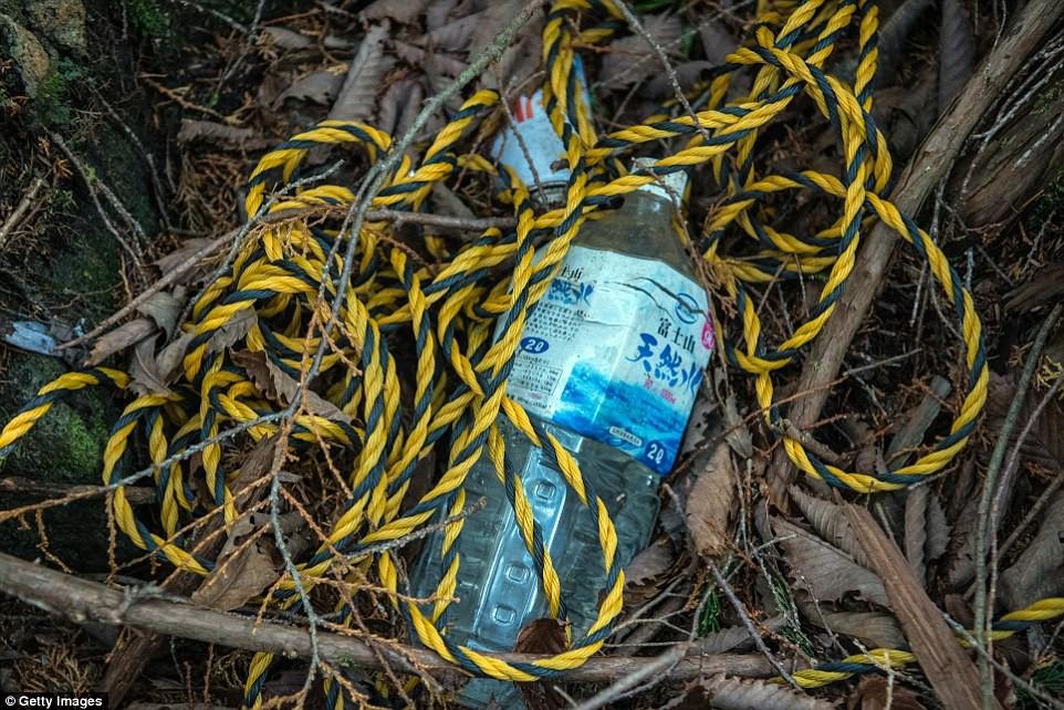 Những bức hình ám ảnh trong khu rừng tự sát: Tỷ lệ tự tử đã giảm ở Nhật nhưng ký ức đau thương vẫn đầy nơi này - Ảnh 13.