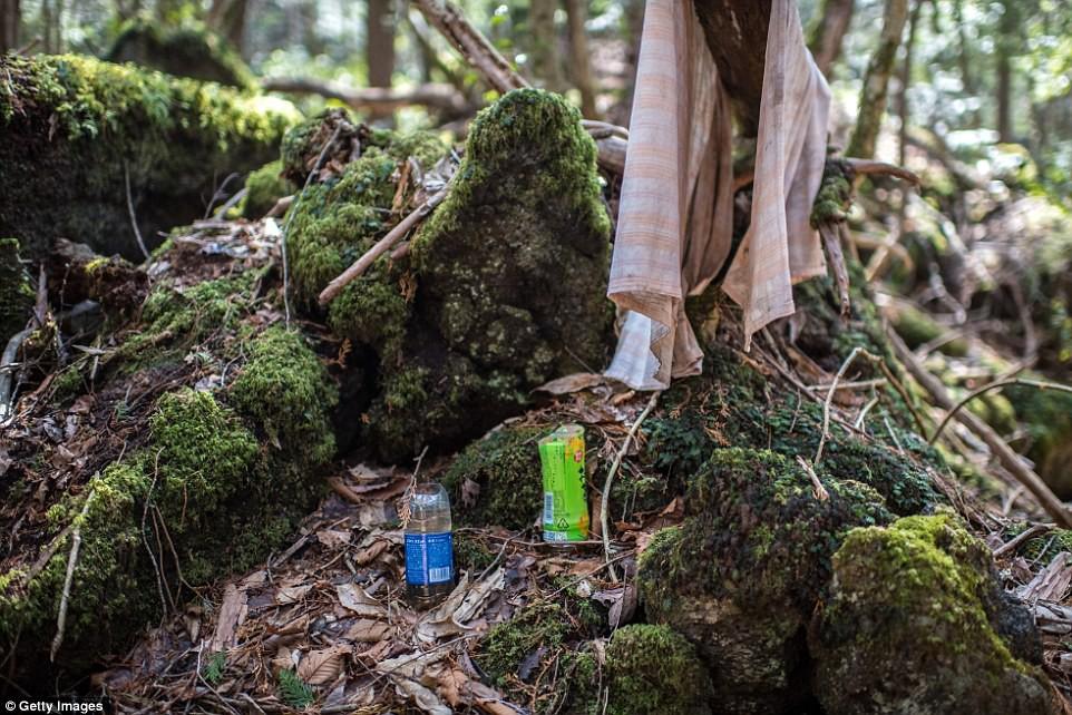 Những bức hình ám ảnh trong khu rừng tự sát: Tỷ lệ tự tử đã giảm ở Nhật nhưng ký ức đau thương vẫn đầy nơi này - Ảnh 4.