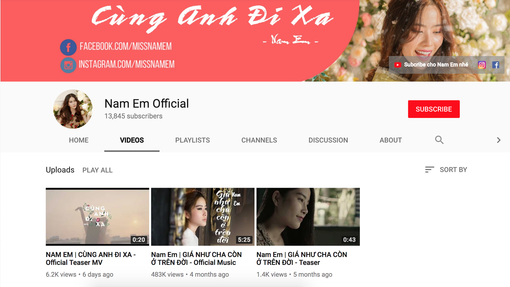 Giữa ồn ào tình cảm, Nam Em gỡ bỏ MV chỉ vừa ra mắt 5 ngày để khẳng định không PR bằng scandal - Ảnh 1.