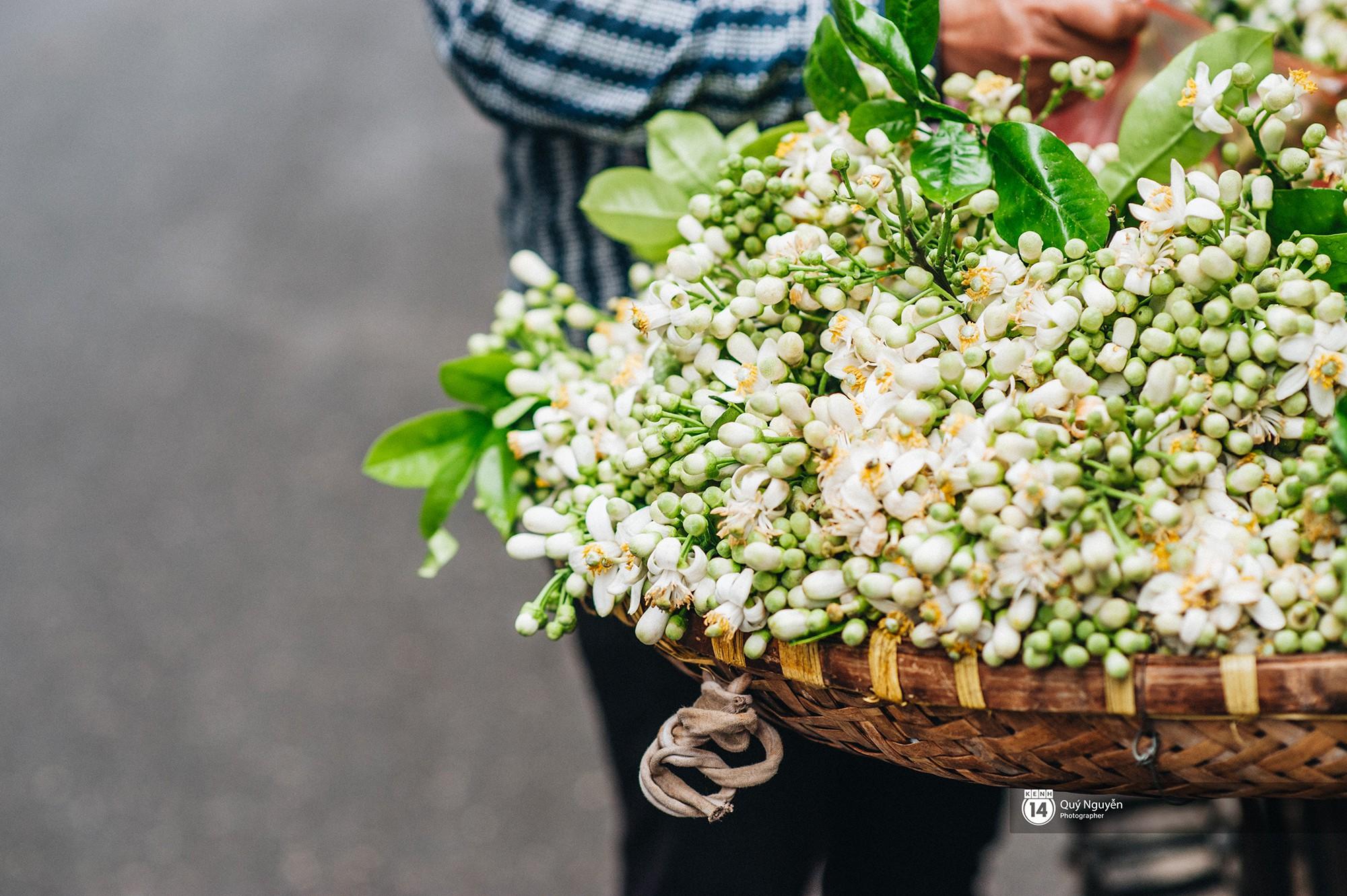 Mùa hoa bưởi phủ trắng phố phường, nhưng được mấy người biết đến các món ăn với hoa bưởi này? - Ảnh 2.