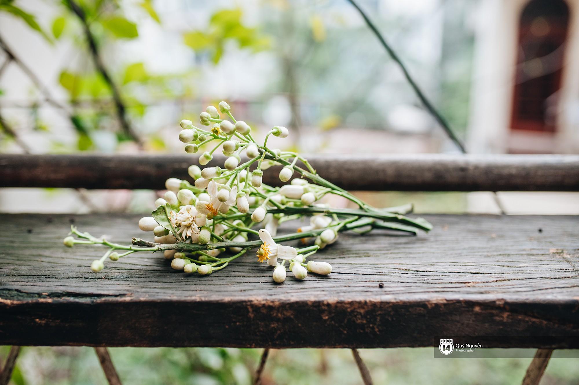 Mùa hoa bưởi phủ trắng phố phường, nhưng được mấy người biết đến các món ăn với hoa bưởi này? - Ảnh 8.