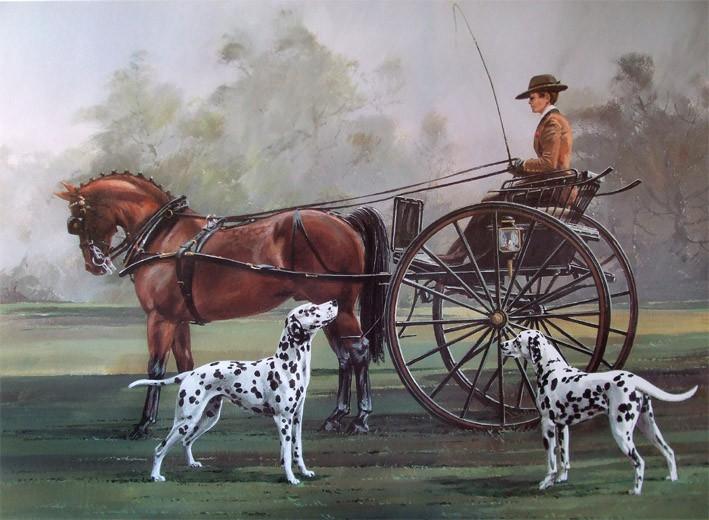 Chó Đốm và xe ngựa
