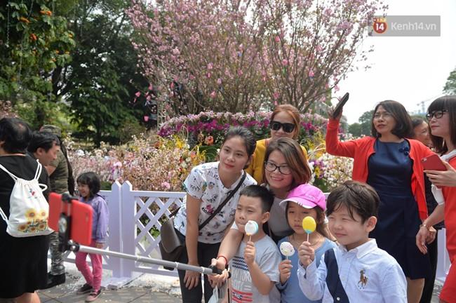 Hàng ngàn người dân Hà Nội chen chúc trong buổi sáng đầu tiên mở cửa Lễ hội hoa anh đào - Ảnh 4.