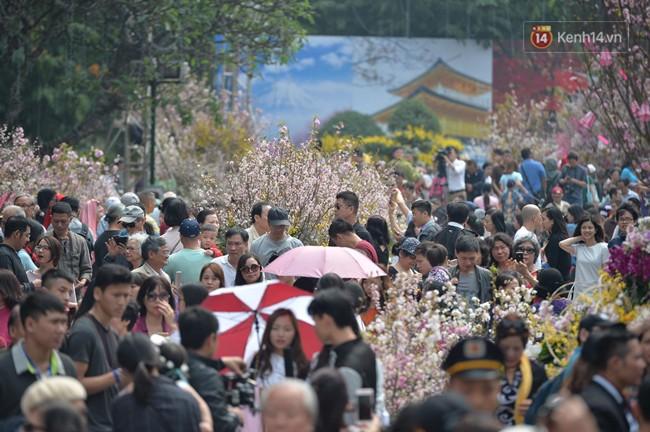 Hàng ngàn người dân Hà Nội chen chúc trong buổi sáng đầu tiên mở cửa Lễ hội hoa anh đào - Ảnh 2.
