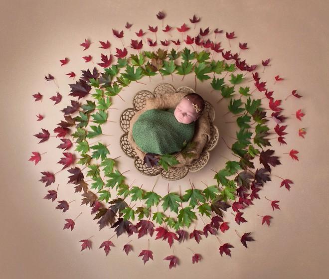 Ngất ngây với chùm ảnh những em bé sơ sinh cuộn tròn say ngủ - Ảnh 2.