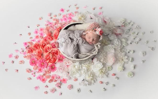 Ngất ngây với chùm ảnh những em bé sơ sinh cuộn tròn say ngủ - Ảnh 12.