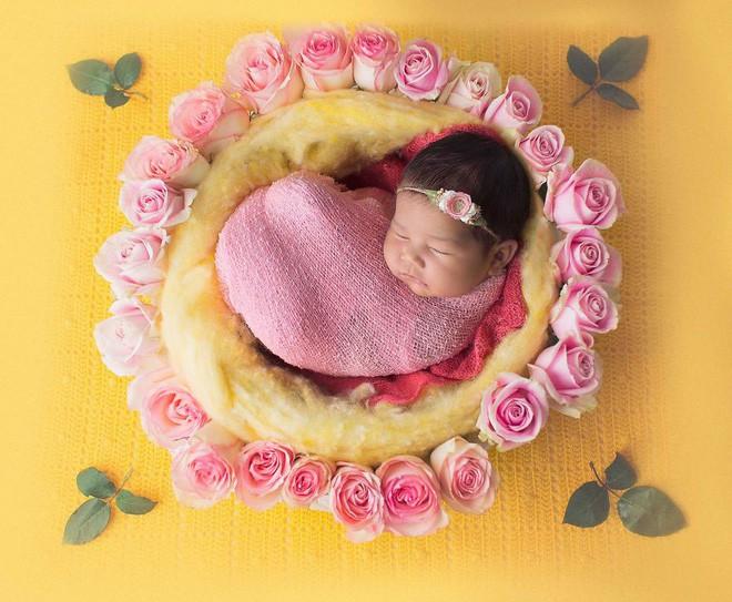 Ngất ngây với chùm ảnh những em bé sơ sinh cuộn tròn say ngủ - Ảnh 23.